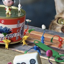 Pikmin Cat