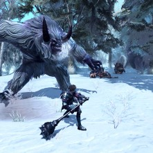 RaiderZ_Snow