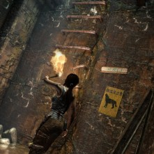 Tomb Raider nly way out copy