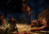 Dragon's Dogma Dark Arisen Screen 8