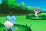 Pokemon x y Sylveon 4