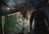 The Last Of Us (8)