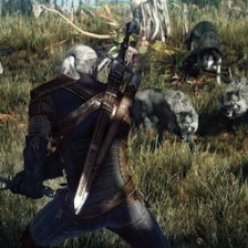 The Witcher 3 Wild Hunts wolves