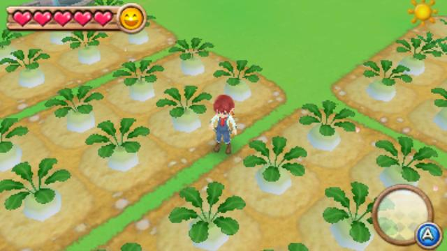 harvest-moon-a-new-beginning-3ds-2